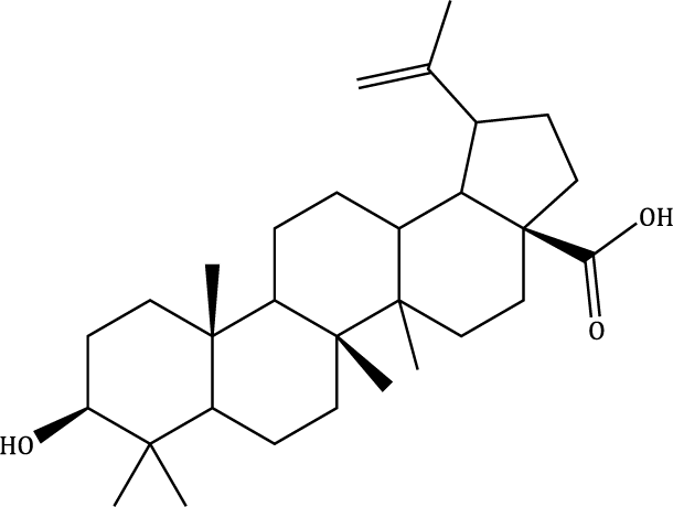 Betulinic acid Compound Image